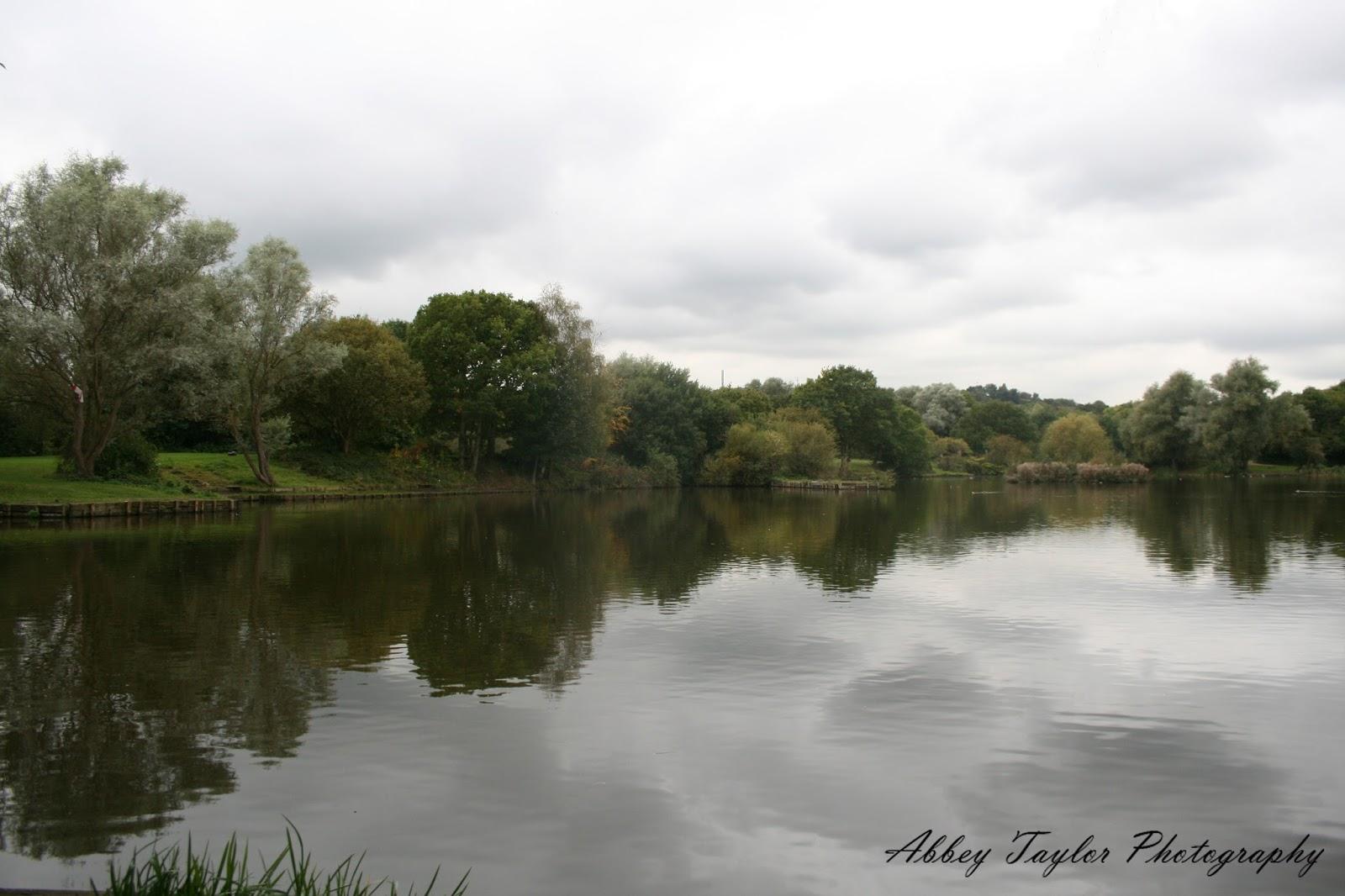 a little bit of abbey: barnsley