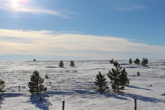 Snowy barren plain