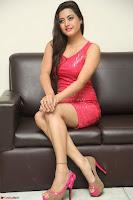 Shipra Gaur in Pink Short Tight Dress ~  Exclusive Poshoot 87.JPG