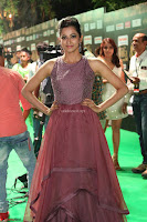 Celebrities in Sizzling Fashion at IIFA Utsavam Awards 2017 Day 1 27th March 2017 Exclusive  HD Pics 44.JPG