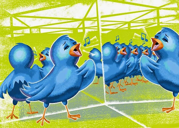 twitter birds in house of mirrors