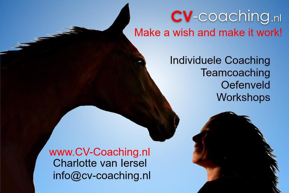 Charlotte van Iersel over CV-Coaching