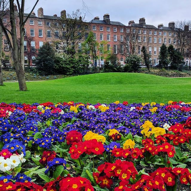 One Day in Dublin Itinerary: Merrion Square Park