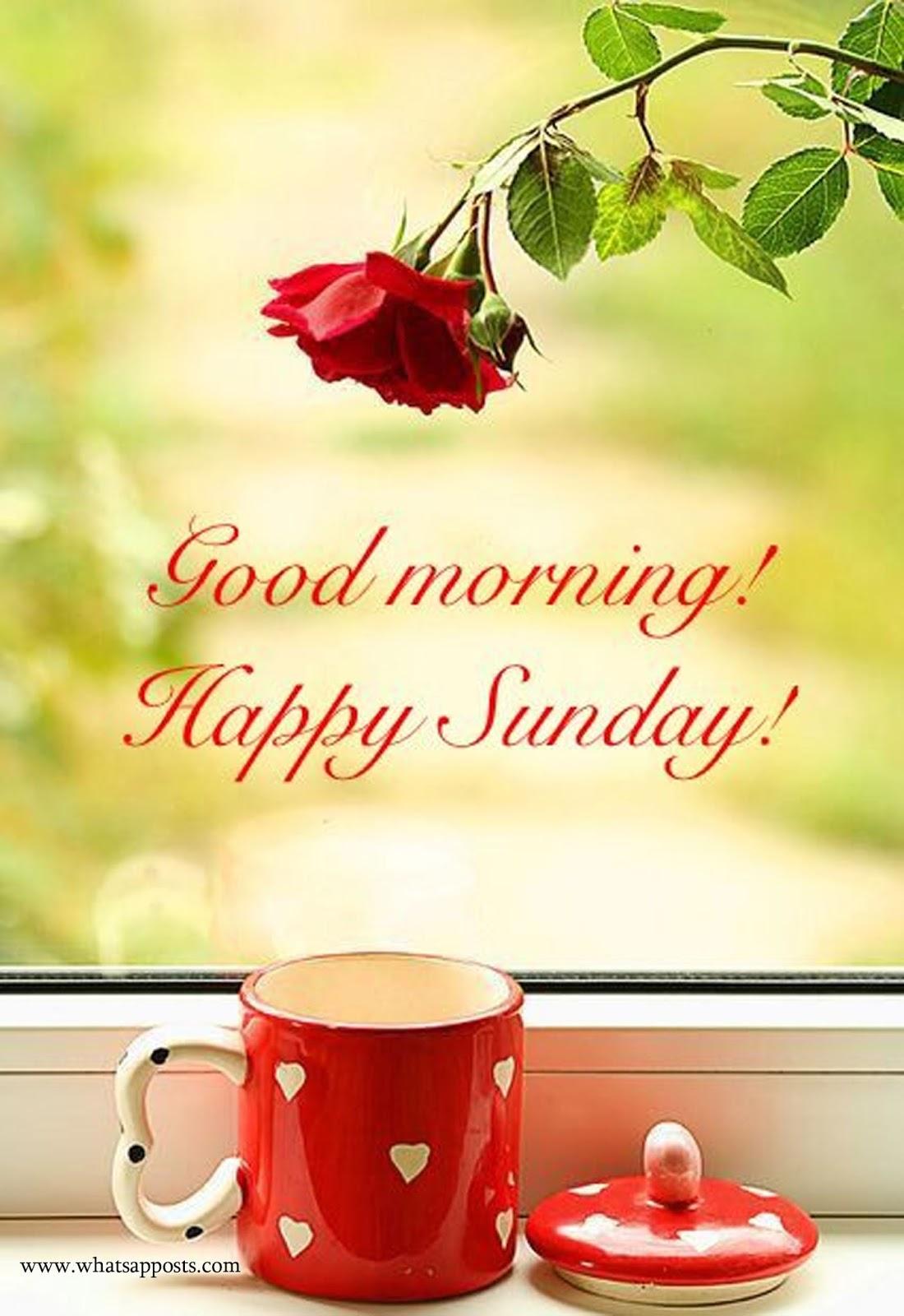 happy sunday wishes whatsapposts