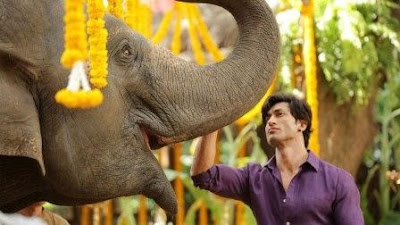 @instamag-junglee-will-release-next-year-vidyut-jammwal