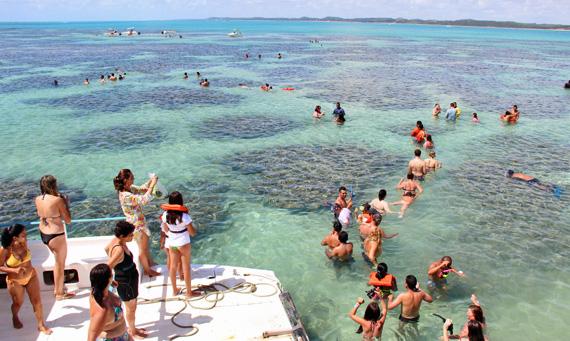 Playas de brasil maragogi for Piscinas naturales maragogi