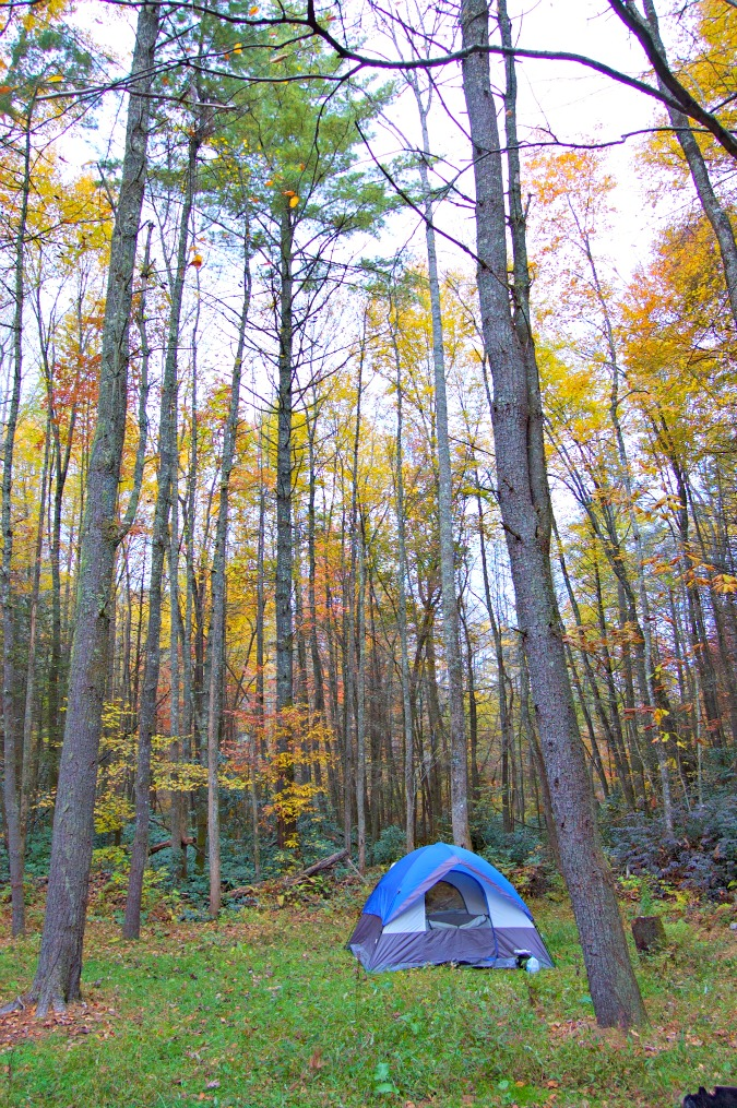Camping in the Fall Foliage