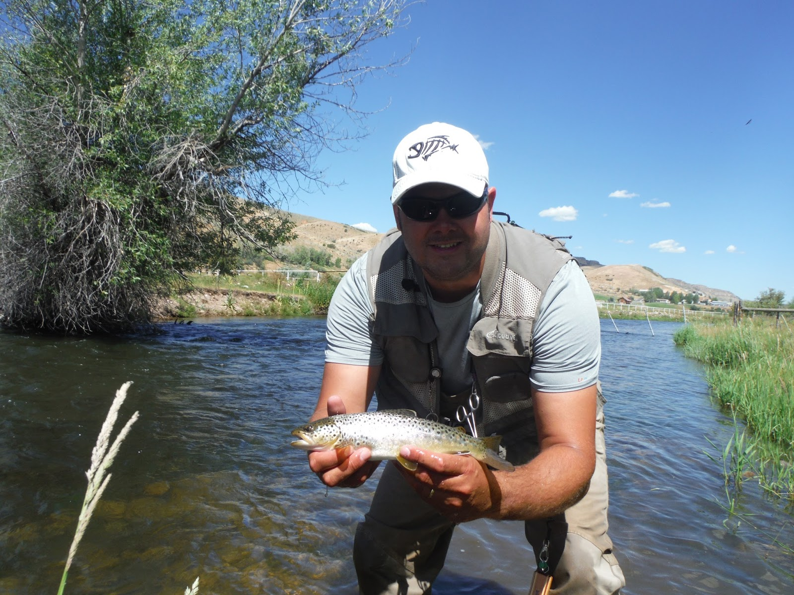 Fly fishing the west with howard the amazing summer for Weber river fishing