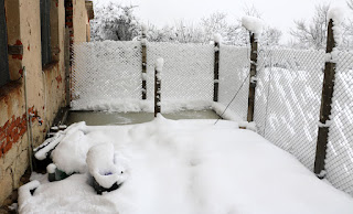 Snow clinging to the chain link fence