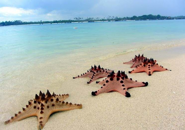 Pulau Pasir Belitung, destinasi belitung, wisata belitung, pulau belitung