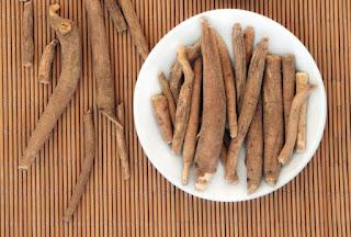 Beneficios y propiedades del eleuterococo (ginseng siberiano)