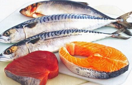 Manfaat Ikan Dibanding Daging dan Ayam