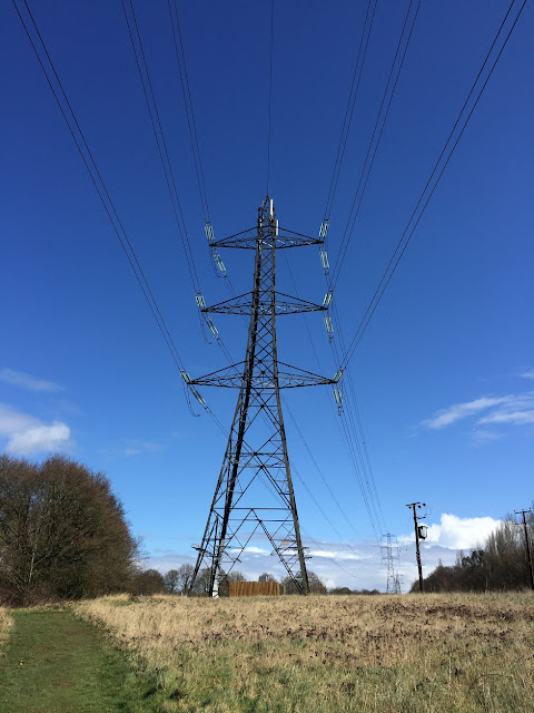 Electricity pylons disappearing off into the distance, Moor Park