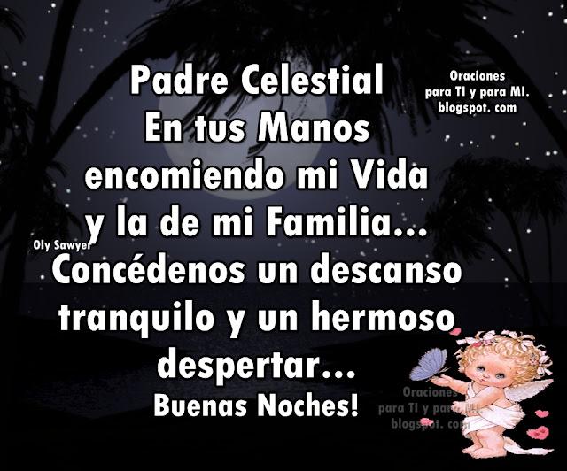 Padre Celestial, en tus Manos encomiendo mi Vida y la de mi Familia...  Concédenos un descanso tranquilo y un hermoso despertar...  BUENAS NOCHES !