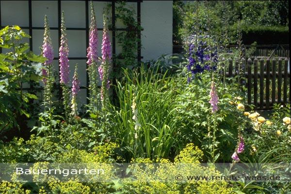 Gartenblog Geniesser Garten Bauerngarten