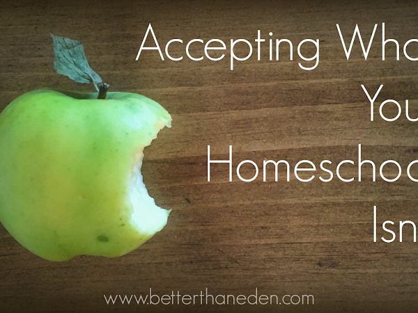 Accepting What Your Homeschool Isn't
