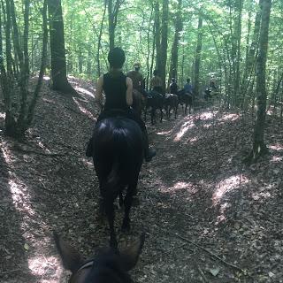 Kroatia, riitta reissaa, laukka, maastolaukka, horsexplore