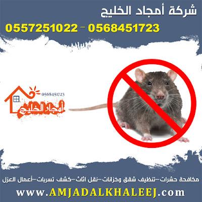 شركة مكافحة الحشرات بالمدينه المنوره - 0568451723