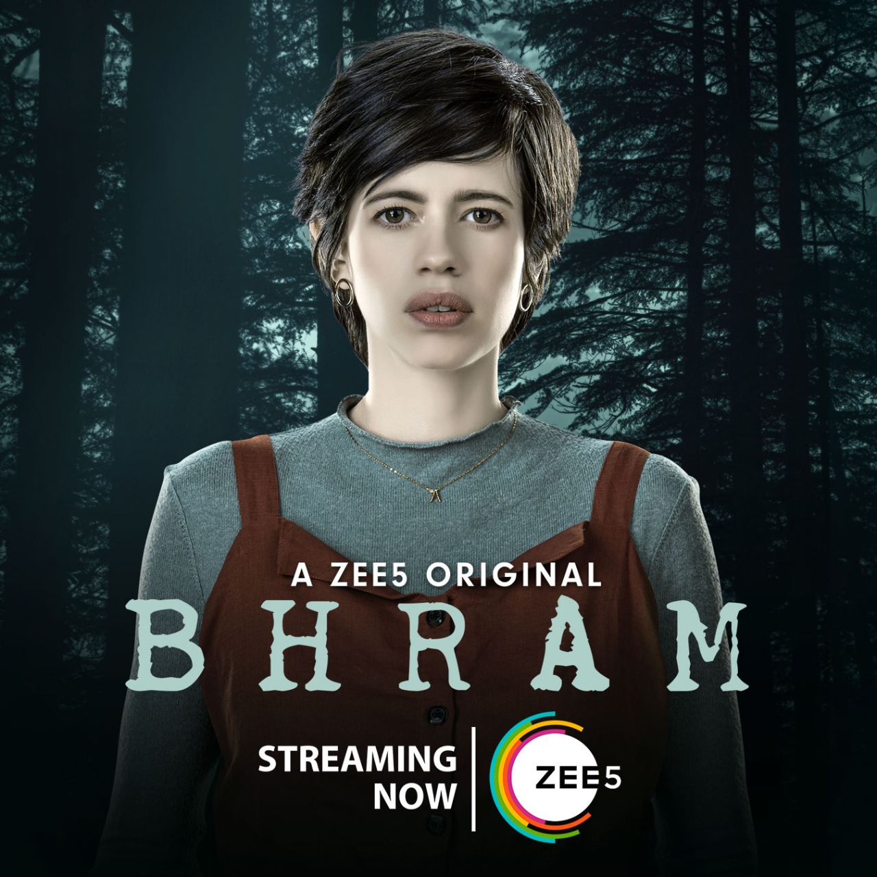 Bhram S01 2020 Hindi Complete Zee5 Web Series 720p HDRip 1GB