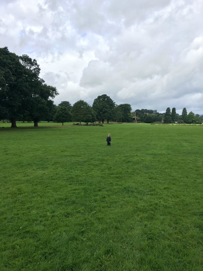 toddler-looking-at-kite-flying