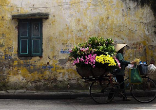 Charm of flower bicycle along Hanoi street 2