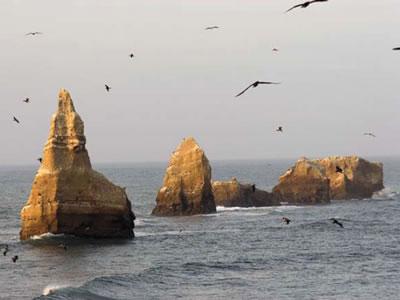 Camping por santa clara del mar argentina - 3 7