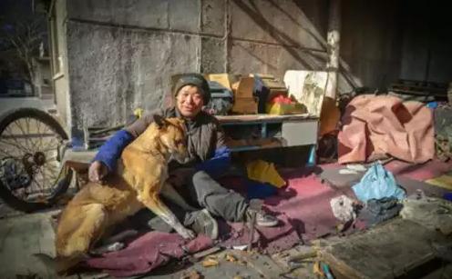 Studi: 5 Hal Yang Membuktikan Anjing Itu Setia Pada Majikannya