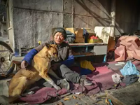 5 Hal Yang Membuktikan Anjing Itu Setia Pada Majikannya