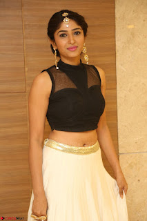 Roshni Prakash in a Sleeveless Crop Top and Long Cream Ethnic Skirt 125.JPG
