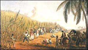 In 1655 The English Led A Successful On Jamaica Spaniards Surrendered To Freed Their Slaves And Then Fled Cuba