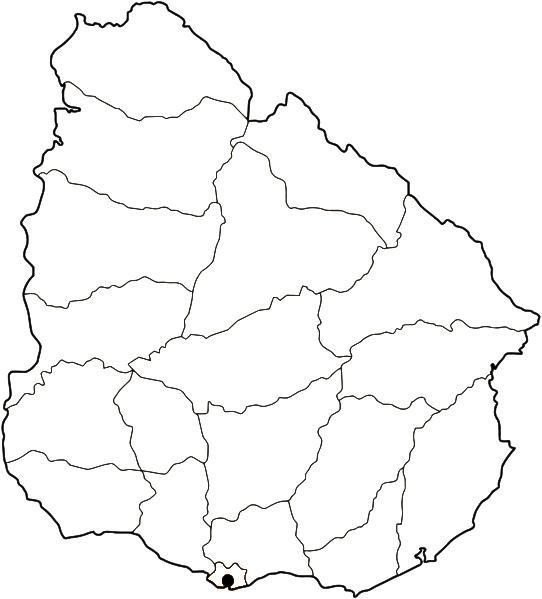 Laminas Para Colorear Coloring Pages Mapa Y Bandera De Uruguay