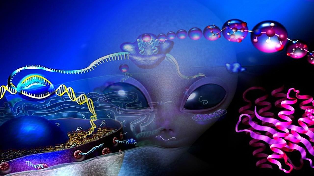 Un mensaje extraterrestre dentro de nosotros