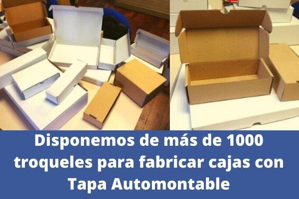 cajas con tapa automontable