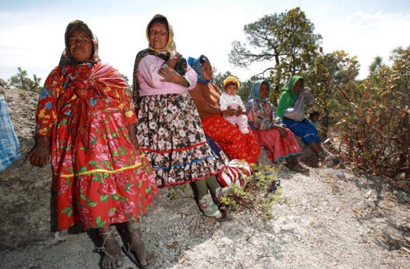 Rescatan a 200 rarámuris secuestrados por el PRI en Chihuahua
