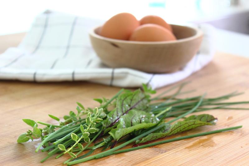Eier, frische Küchenkräuter, Frühling, Schnittlauch, Thymian, Blutampfer, Oregano