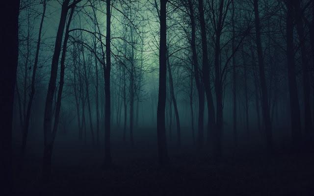 Гілки та листя берези протягом ночі помітно опустилися
