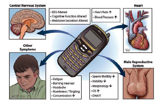 negative effects of cell phones on peoples lives The positive effects of cellphones include the essential role the device plays in emergencies, and the opportunity the device allows for convenient communication the top negative effects of cellphone use include the distracting role cellphone use plays in education and automobile accidents the.