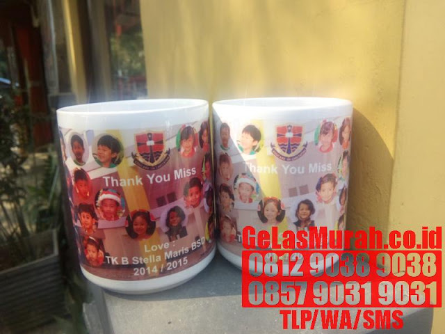 MUG PRINTING FOR FUN AND PROFIT FROM HOME DVD
