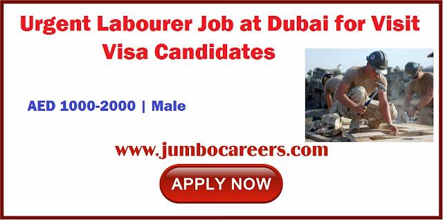 Labourer Job at Dubai