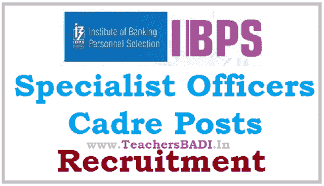 ibps specialist officers cadre posts 2017 recruitment notification,online application form,exam date,last date for apply online,hall tickets/admit cards, results,selection list