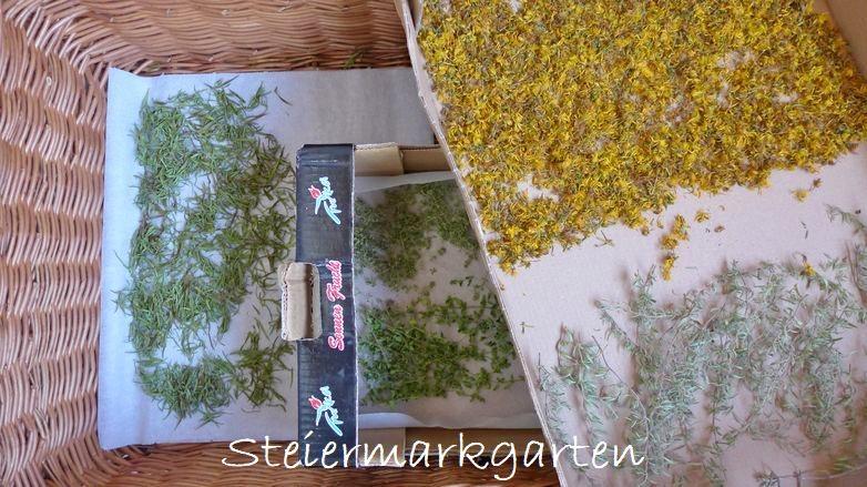 Kräuter-natürlich-trocknen-Steiermarkgarten