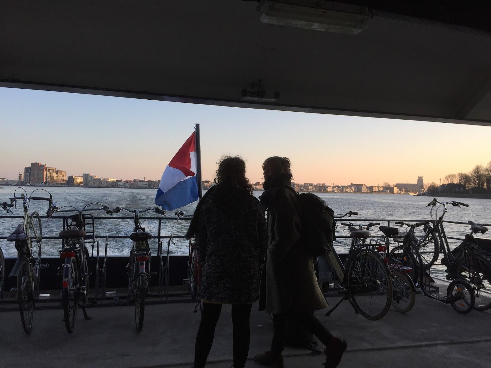 naj w Holandii