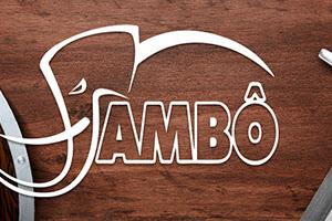 Nova parceria: Jambô Editora