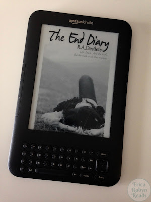 The End Diary by R.A. Desalts ebook cover