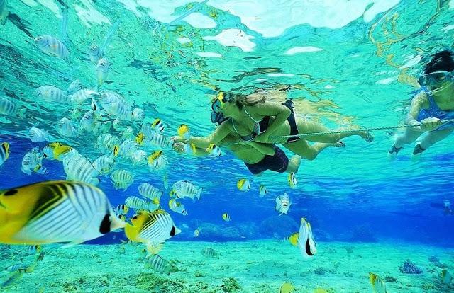 Isla Key Largo