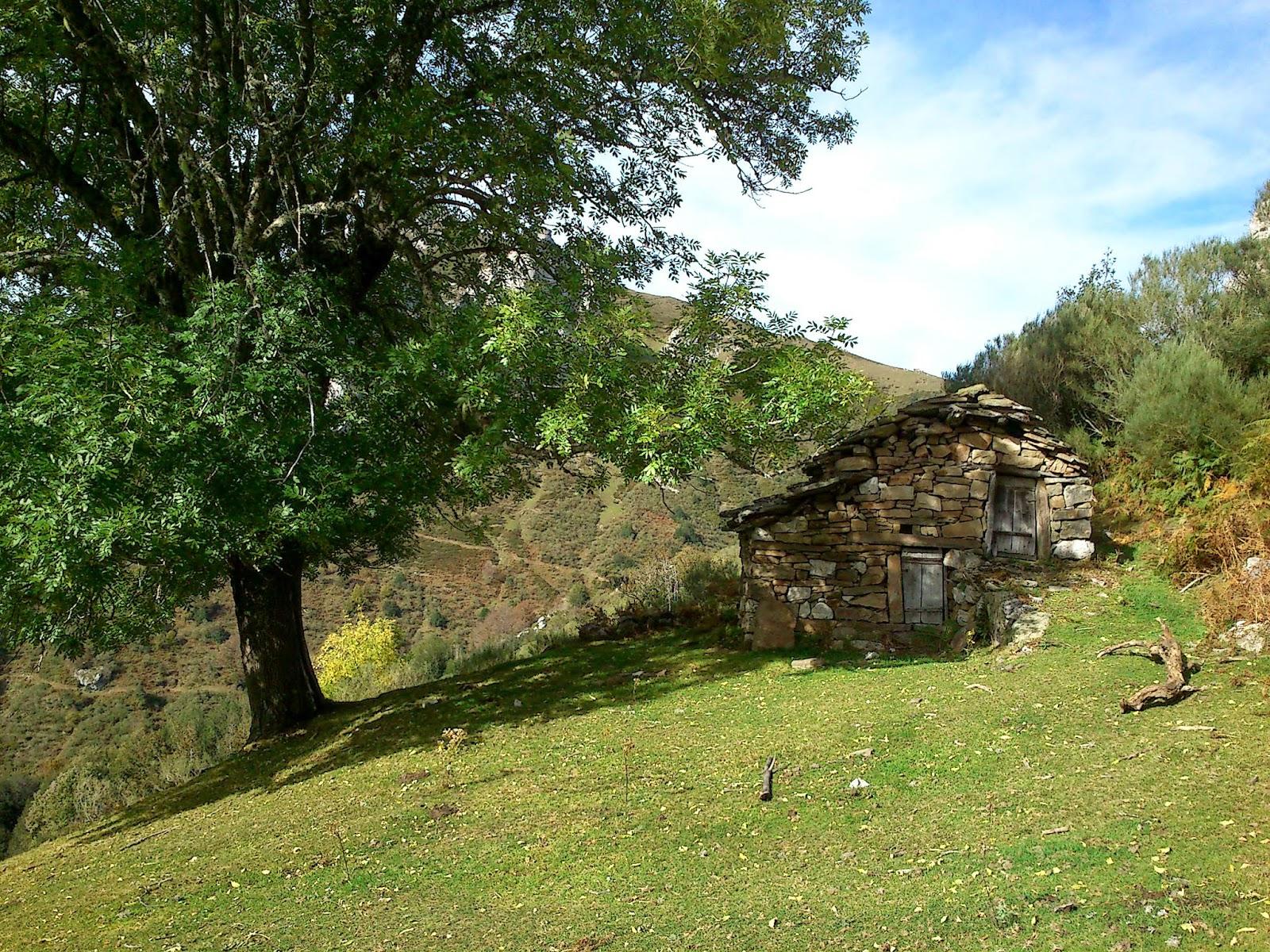Cabaña Piedrafita.