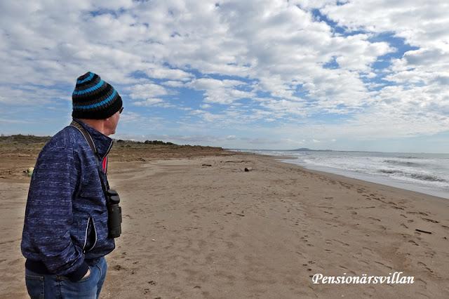 Stranden och stickning