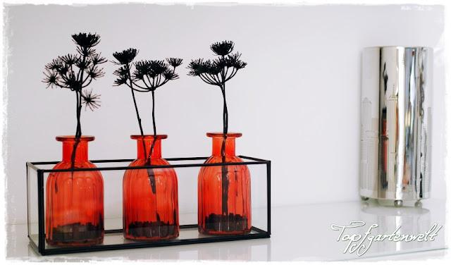 Glasbehälter mit Metallrahmen mit organen Vasen und Samenständen