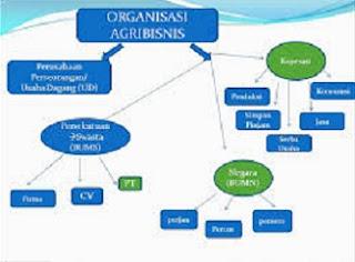 jenis jenis badan usaha,persamaan badan usaha dan perusahaan,perbedaan badan usaha dan perusahaan berdasarkan tujuan,perbedaan badan usaha dan perusahaan menurut wujudnya,bentuk bentuk badan usaha,