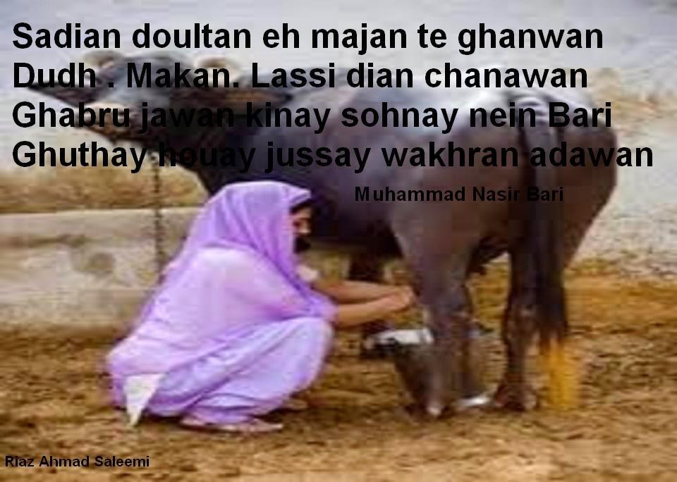 punjab post